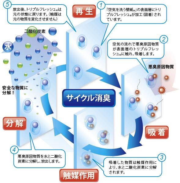 zu_shoushu_09.jpg